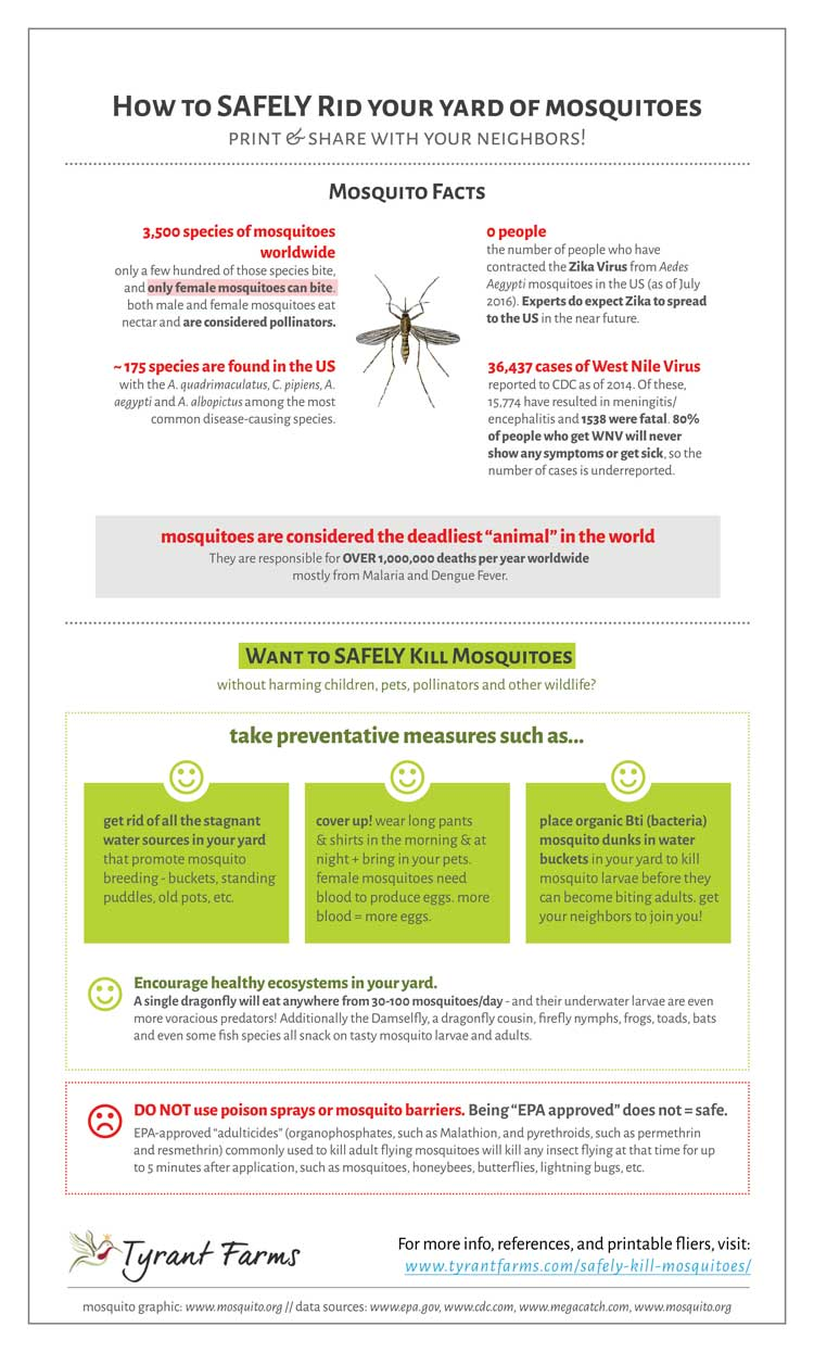 How to Safely Kill Mosquitoes In Your Yard - Tyrant Farms