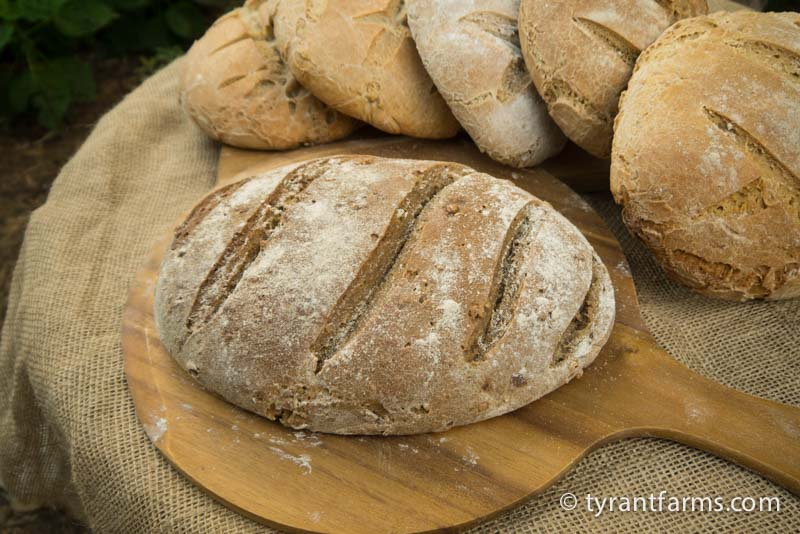 Whole wheat, organic, sourdough bread wood-fired to absolute perfection.